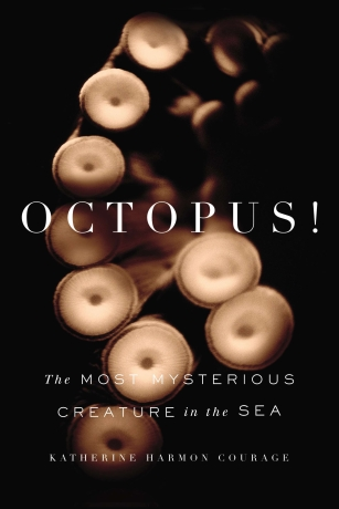 Octopus! jacket_final (1)