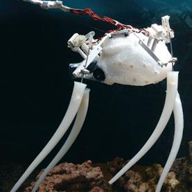 robot octopus